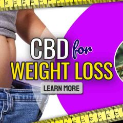 """Image text: """"CBD for Weight Loss""""."""