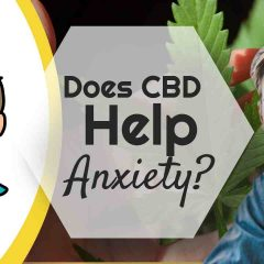 """Image text: """"Does CBD Help Anxiety""""."""